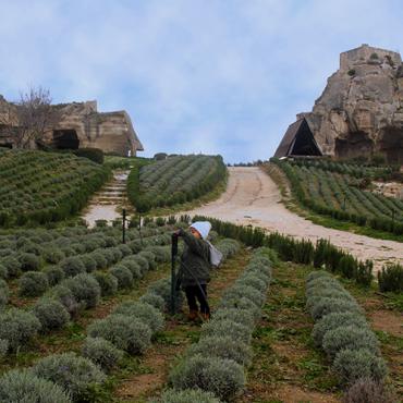 Jardines del Castillo de Baux-de-Provence